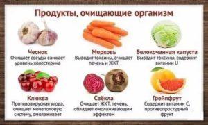 Какие продукты очищают легкие
