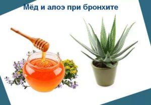 Рецепт от бронхита с алоэ и медом