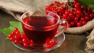 Лечебные рецепты из калины красной