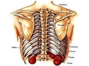 Болит нижнее ребро справа при нажатии