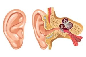 Упражнения для ушей при отите