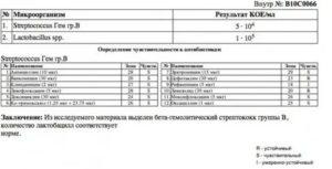 Streptococcus agalactiae 10 в 2 степени