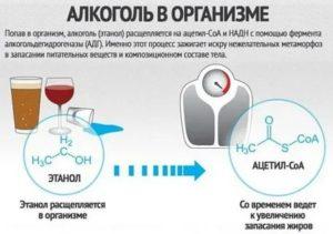 Можно ли при температуре пить алкоголь