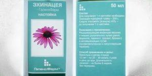 Настойка эхинацеи для иммунитета как принимать детям