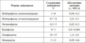 Сегментоядерные нейтрофилы норма у женщин в крови