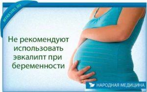 Эвкалипт для беременных