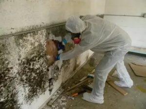 Надышался строительной пылью что делать