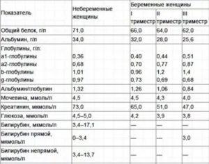 Общий анализ крови при беременности норма таблица