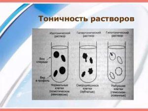 Чем отличается изотонический раствор от гипертонического
