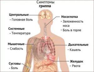 Почему ломит кости при температуре