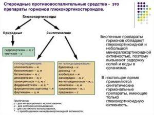 Стероидные и нестероидные гормоны
