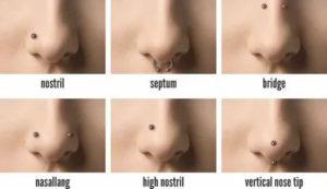 Виды пирсинга носа