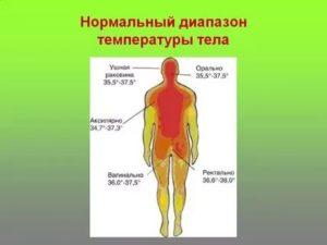 Почему тело горячее а температуры нет