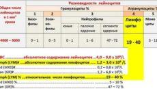 Лимфоциты абсолютное количество норма