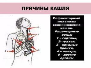 Рефлекторный кашель причины