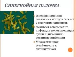Синегнойная палочка у детей комаровский видео