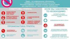 Грипп меры профилактики симптомы данного заболевания