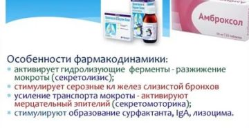 Бромгексин и амброксол разница