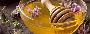 Мед с чабрецом полезные свойства
