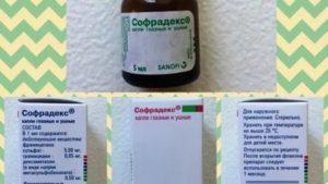 Лечение аденоидов прополисом у детей